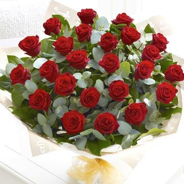 24 x Red Roses for a Red Bandit 50 cm #RedRosesForARedBandit